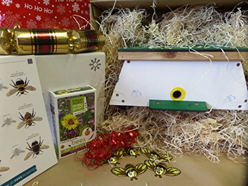 Bumble bee gift box- great gift for gardeners and Nature lovers