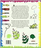 Image de Aprende a Dibujar (Libros de conocimientos)