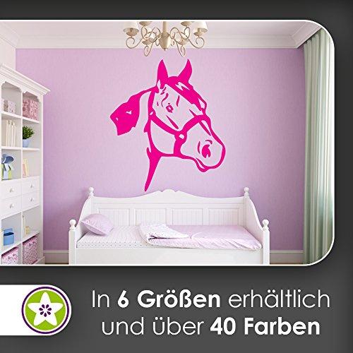 kiwistar-pferd-kopf-reiten-stute-hengst-mahe-wandtattoo-in-6-grossen-wandaufkleber-wall-sticker