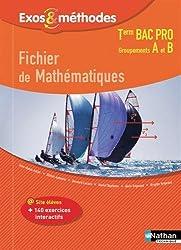 Fichier de Mathématiques Tle Bac Pro Groupements A et B