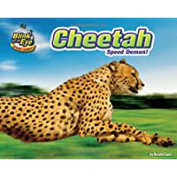Cheetah: Speed Demon!