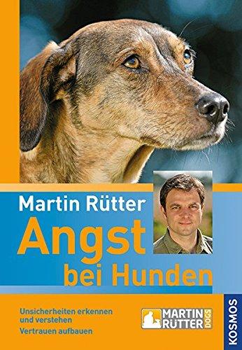 hundeinfo24.de Angst bei Hunden: Unsicherheiten erkennen und verstehen Vertrauen aufbauen