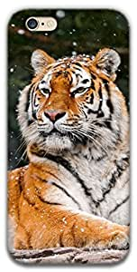 The Racoon Grip printed designer hard back mobile phone case cover for Apple Iphone 6/6s. (snow tiger)