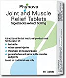 Phynova Joint and Muscle Relief Tablets, Pack of 60 Tablets (Pack of 1)