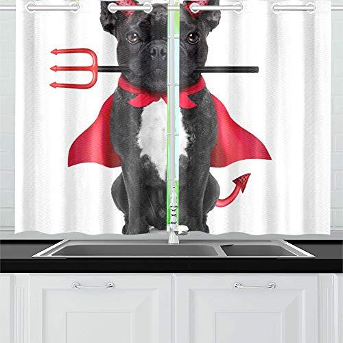 JIUCHUAN Halloween Hexe französische Bulldogge Hund gekleidet Küche Vorhänge Fenster Vorhang Stufen für Café, Bad, Wäscherei, Wohnzimmer Schlafzimmer 26 X 39 Zoll 2 Stück