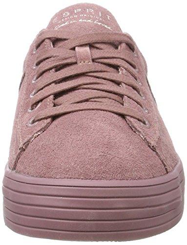 ESPRIT Damen Sita Lace Up Sneaker Violett (Mauve)