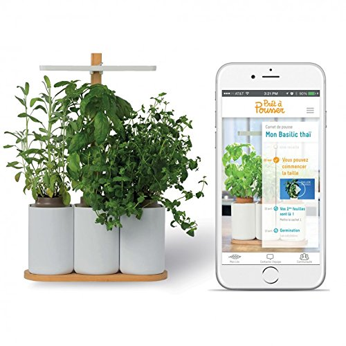 smart-lilo-le-potager-dintrieur-autonome-prt-pousser-jardinez-toute-lanne-simplement