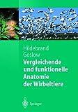 Vergleichende und Funktionelle Anatomie der Wirbeltiere (Springer-Lehrbuch) (German Edition)