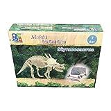 Newin Star Dinosaurier Skelette, Ausgrabungsset Dinosaurier Entdeckung Spielzeug...