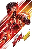 Up Close Poster Ant-Man and The Wasp - One Sheet (61cm x 91,5cm) + 2 tringles Noires avec Suspension