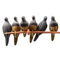 Huntingdoor Decoy Pigeon 6 pcs Field Ornament Birds Scarer in Crops Ground Artificial Lure Garden Decoration in Tree or Par