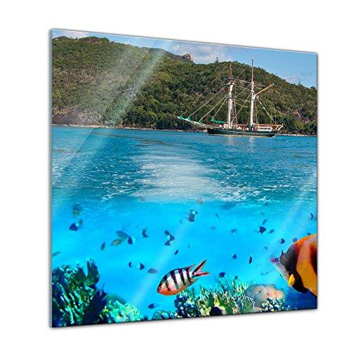 Glasbild - Marine Life in The Whitsundays - Australien - 50x50 cm - Deko Glas - Wandbild aus Glas - Bild auf Glas - Moderne Glasbilder - Glasfoto - Echtglas - kein Acryl - Handmade