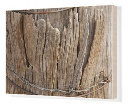 canvas-print-of-detail-typical-old-australian-farm-gate-post
