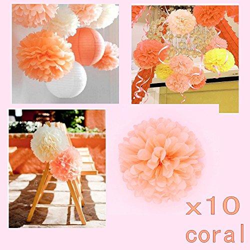 JZK 10 X Pompoms Pompons, 25cm Durchmesser, Seidenpapier Blume Dekoration  Für Wohnzimmer Hochzeit Geburtstag