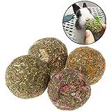Jiamins 6 Pcs Balle d'herbe Boule Hamster Petits Animaux Jouets Lapin Hamster Accessoire Boule de meulage des Dents (Carotte)