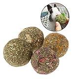 Jiamins 6 Stück Gras-Kugel Hamster Kleintiere Spielzeug Häschen Hamster Zubehör Kugel Schleifen für Zähne