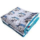 Minky Babydecke Kuscheldecke Krabbeldecke Decke Super weich und flauschig Handarbeit (75x100cm, Teddy Seemann Blau)