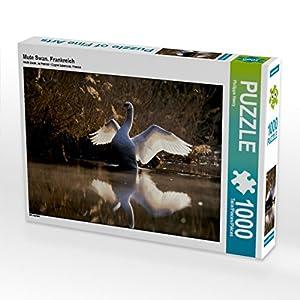 CALVENDO - Puzzle Mute Swan. Henry Philippe - Puzzle de 1000 Piezas (64 x 48 cm), diseño de Francia