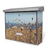 BURG-WÄCHTER Edelstahl Briefkasten, Motivbriefkasten Modell Secu Line 31,5 x 38,5 x 11,5cm, Design Briefkasten mit Motiv Sommer am Meer