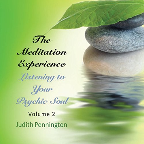 The Meditation Experience: Listening to Your Psychic Soul, Vol. 2  Audiolibri