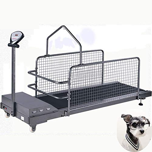 AMhuui Hundelaufband, Fitness Hundelaufband Für Hunde Up The Best Laufband-Plattform Mit Bildschirm Und Geländer, Innenübung Für Hunde -
