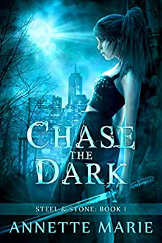 chase-the-dark-steel-stone-book-1-english-edition