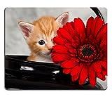 Die besten Liili Schreibtische - Mousepads Kätzchen in schwarz Wasserkocher mit Rot Blume Bewertungen