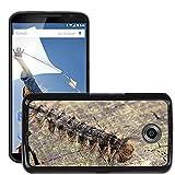 Just carcasa caliente estilo teléfono celular PC Funda rígida//m00140185Caterpillar Oriental Verde larvas//LG Google Nexus 6