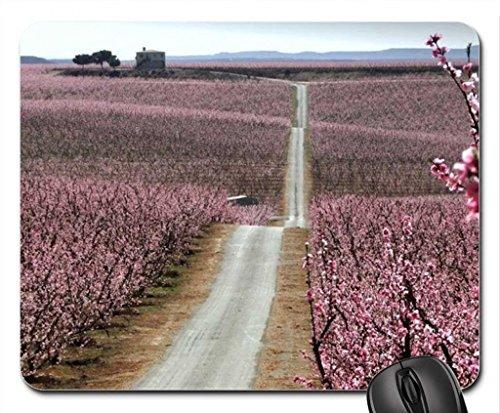 arbuste-en-douceur-leblouissement-tapis-de-souris-tapis-de-souris-tapis-de-souris-fleurs