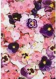 1x A4Rosa bedruckt Stiefmütterchen Blumen Tapete Decor Zuckerguss Essbar Cake Topper verziert Tabelle–Perfekt für große Kuchen