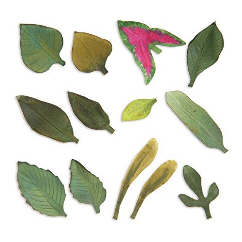 von Susan tierney-cockburn Thinlits sterben Set, Mehrfarbig, 13Stück (Halloween Papier Platten)