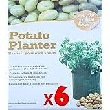 Ardisle Lot de 6 pots pour sac de culture de pommes de terre-Grow Your Own Sac tube Spuds pommes de terre pour terrasse pour pommes de terre