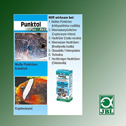 JBL 1006500 Heilmittel gegen Pünktchenkrankheit für Aquarienfische, Punktol Plus 125, 100 ml