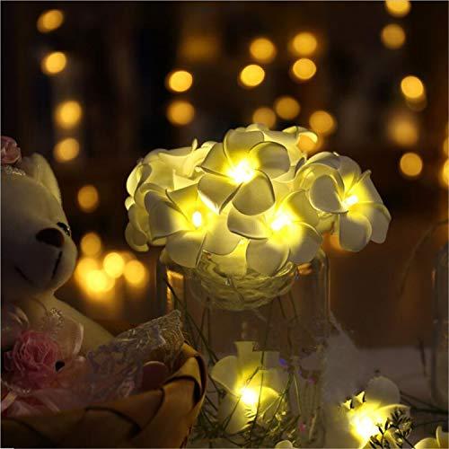 LY-JFSZ Guirlande Lumineuse,Fleurs Partie De Noël Chambre Terrasse Intérieure Jardin Éclairage Rideau De Mariage Décoration 3 M 20LED Accès USB Chaud Blanc