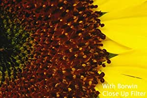 Borwin Digital 37mm Close Up Macro Filtre Set (4 Filtres : +1 +2 +4 +10) Pour appareil photo et l'objectif vidéo