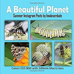 A Beautiful Planet: Summer Instagram Posts by Imaloserdude (Canon EOS 80D with 100mm Macro lens)
