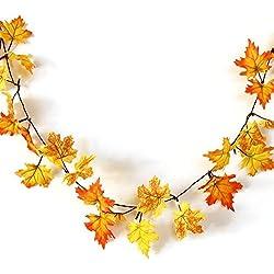 Shopping - Ratgeber 51jamHHEcNL._AC_UL250_SR250,250_ Geniessen Sie die farbenfrohe Jahreszeit mit Herbst-Deko