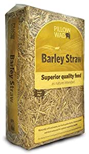 Pillow Wad Barley Straw, Large, 2 Kg, Pack of 3