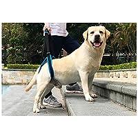 MLMCWCJ Correa Auxiliar para Caminar para Perros, Azul Anciano discapacitado Lesión en la Pierna Trasera Impulsión de Soporte Auxiliar impotente con cinturón para Mascotas (Tamaño : L)