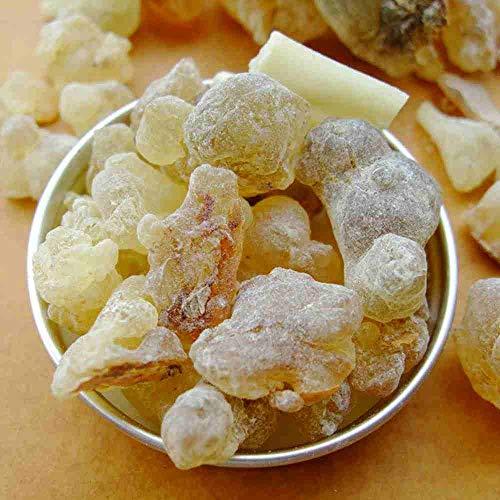 WellinCai Natural Omán Olíbano resina 50G orgánico Premium Natural lágrimas Gum Rock varillas...