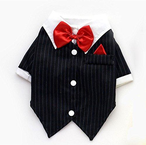 Teddy Dress Fancy Kostüm Boy - SMALLLEE_LUCKY_STORE Hunde Anzug T-Shirt Hemd mit Schleife Smokinghemd Formelle Kostüm für Kleine Hunde Schwarz S