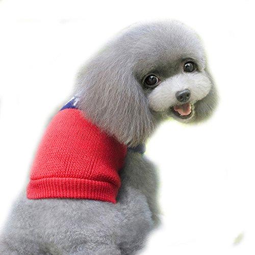 Amphia - KostüMe für Hunde,Pet Kleidung - Haustier-Hunde-Katzen-Winter-Warmer Strickpullover-Kleiner Welpen-Mantel-Kleid(Rot, m,M) (Die Katze Im Hut Weibliche Kostüm)