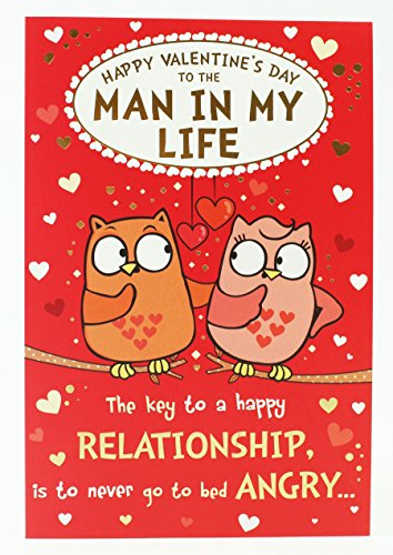 To Man in My Life Owl Pair Valentines Card Funny +