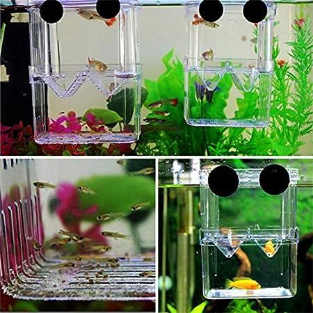 Banbie8409 Fish Breeding Isolation Hanging Aquarium Accessories Incubator Box Tank(Color:Transparent)