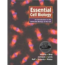 Essential Cell Biology: An introducton to the Molecular Biology of the Cell by Bruce Alberts (1997-07-01)