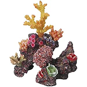 Haquoss Reef Dream 15, 15x 10x 17H cm