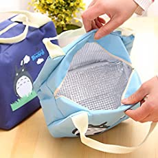 Siddhi Collection Fancy Totoro Cartoon Portable Baby Feeding Milk Bottle Thermal Insulation Bag, Medium (Multicolour)