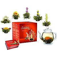 """Creano Teeblumen Mix - Geschenkset """"ErblühTee"""" Frühjahrslese mit Glaskanne Weißer Tee (in 6 Sorten)"""