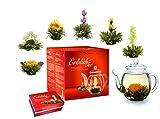 Creano Teeblumen Mix - Geschenkset 'ErblühTee' Frühjahrslese mit Glaskanne Weißtee (in 6 Sorten)