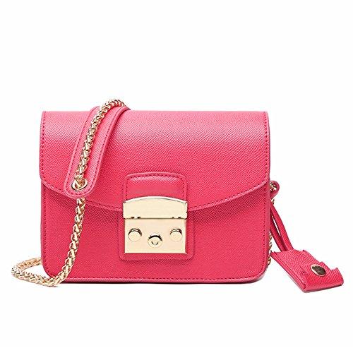 Sacchetto di spalla selvaggio della catena ,borsa mini lady square-A C